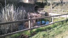 La bassa del Prat